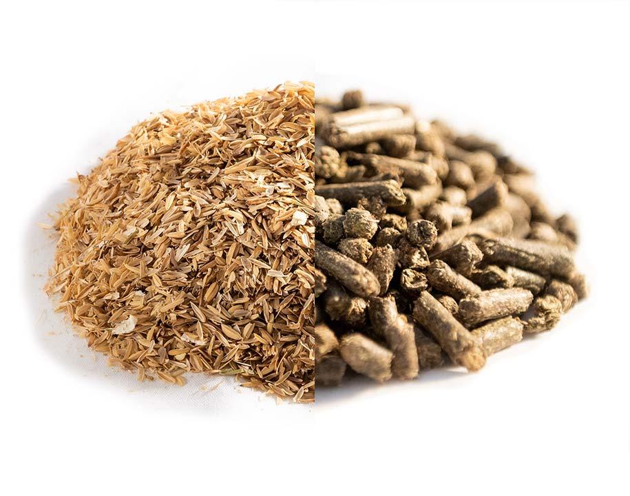 Lolla di riso + Paglia pellettata